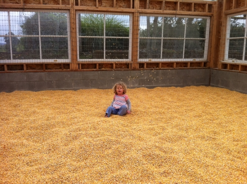 child in corn