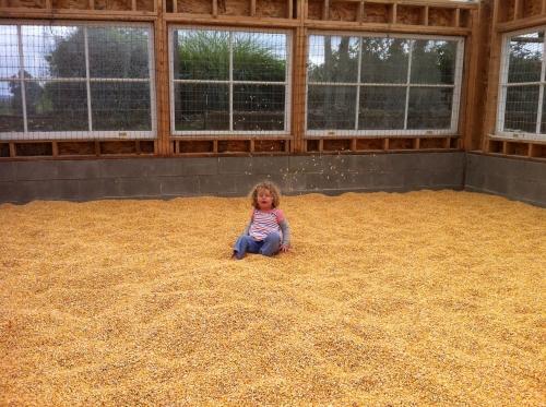 child in corn